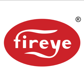 Fireye 35-130 1 BSP flange painted grey